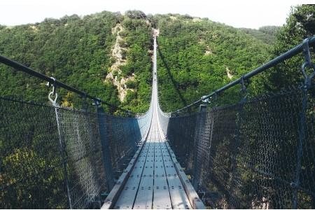 Suspension footbridge over ravine